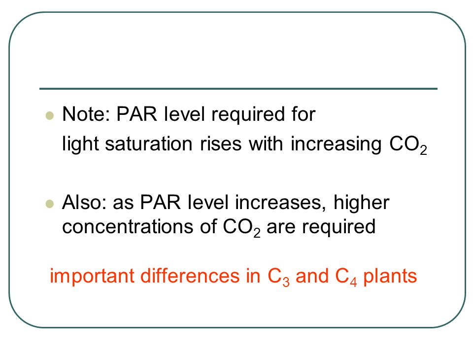 Note: PAR level required for light saturation rises with increasing CO 2 Also: as PAR level increases, higher concentrations of CO 2 are required important differences in C 3 and C 4 plants