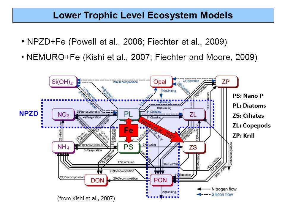 Lower Trophic Level Ecosystem Models NPZD+Fe (Powell et al., 2006; Fiechter et al., 2009) NPZD+Fe (Powell et al., 2006; Fiechter et al., 2009) NEMURO+Fe (Kishi et al., 2007; Fiechter and Moore, 2009) (from Kishi et al., 2007) Strom et al., 2007 NPZD PS: Nano P PL: Diatoms ZS: Ciliates ZL: Copepods ZP: Krill Fe