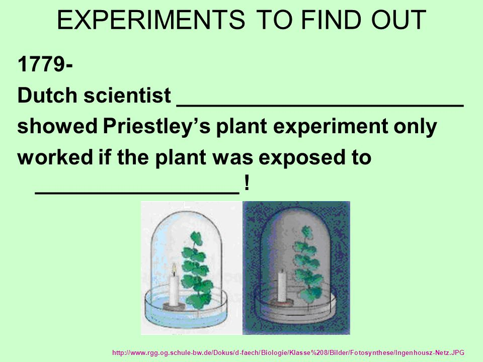 EXPERIMENTS TO FIND OUT 1779- Dutch scientist ________________________ showed Priestley's plant experiment only worked if the plant was exposed to _________________ .