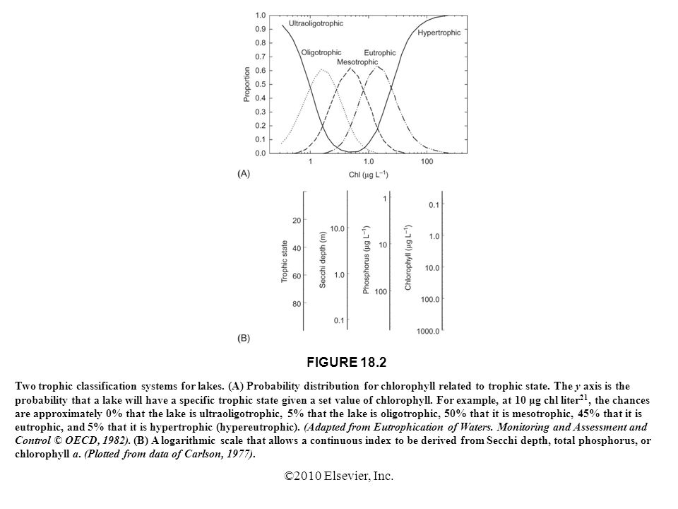 ©2010 Elsevier, Inc. FIGURE 18.2 Two trophic classification systems for lakes. (A) Probability distribution for chlorophyll related to trophic state.