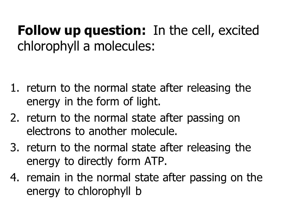 Review: Which answer is an example of a molecule with high potential energy.