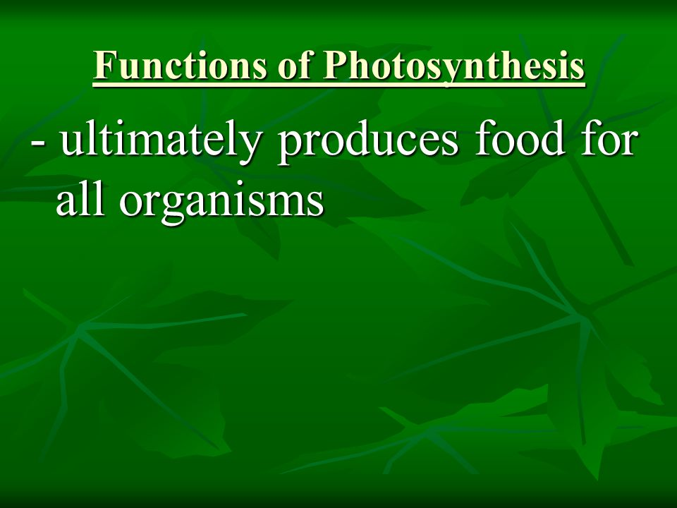 Functions of Photosynthesis - ultimately produces food for all organisms