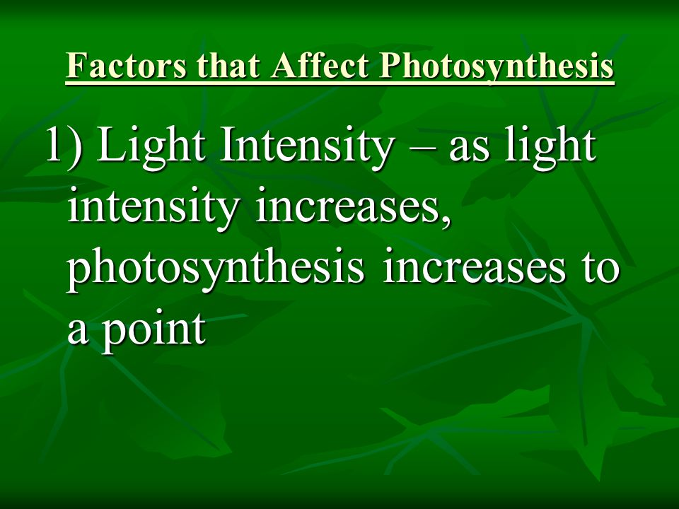 Factors that Affect Photosynthesis 1) Light Intensity – as light intensity increases, photosynthesis increases to a point