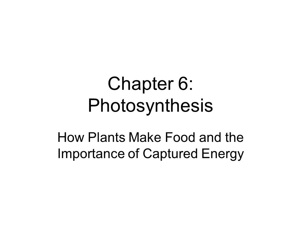 Chapter 6: Photosynthesis How Plants Make Food and the Importance of Captured Energy