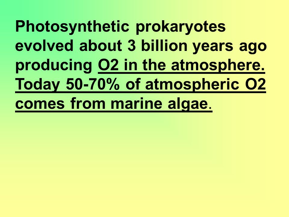 Photosynthetic prokaryotes evolved about 3 billion years ago producing O2 in the atmosphere.