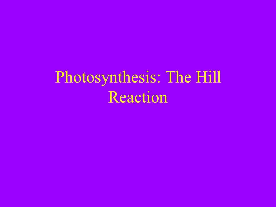 Photosynthesis: The Hill Reaction