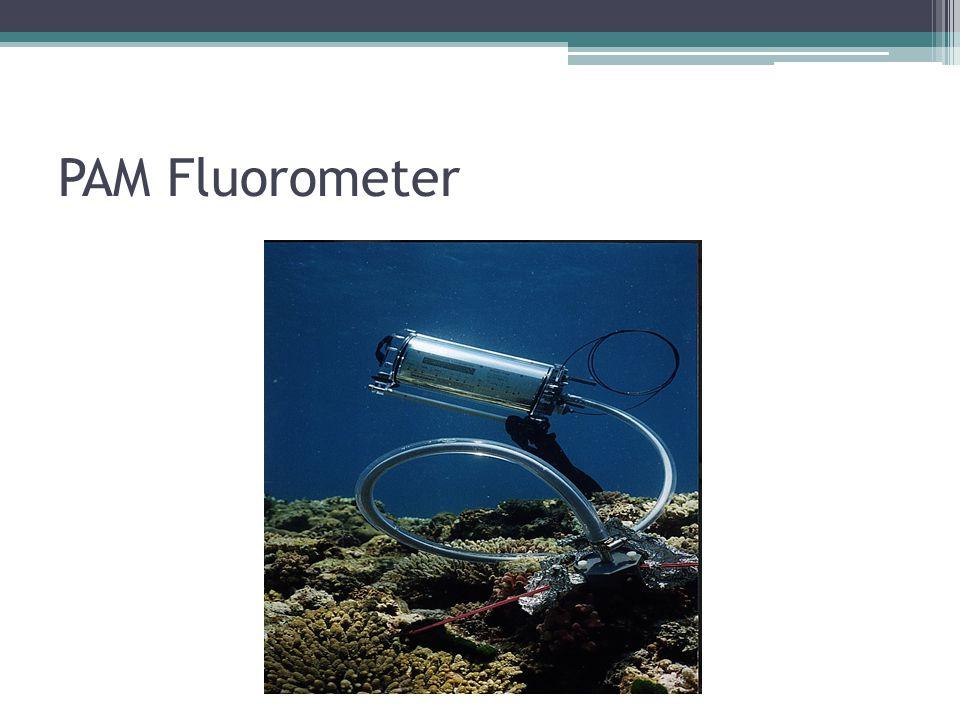 PAM Fluorometer
