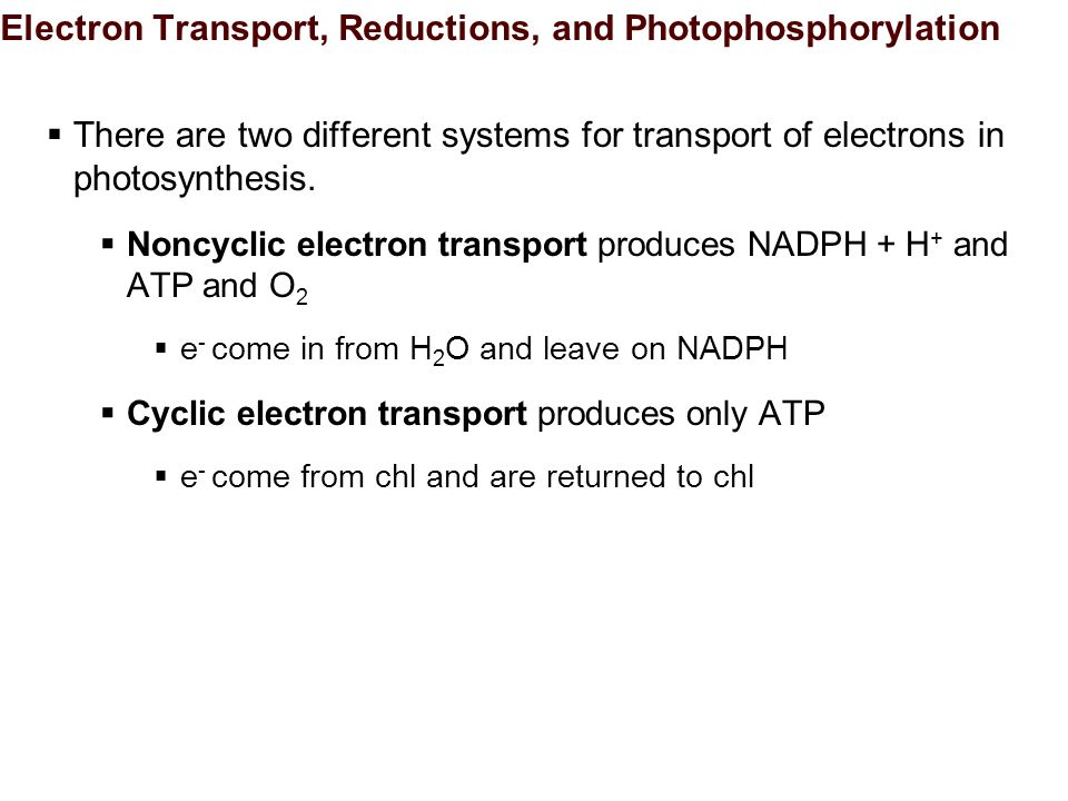 Electron Transport, Reductions, and Photophosphorylation  There are two different systems for transport of electrons in photosynthesis.