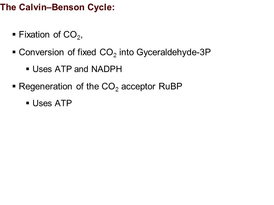 The Calvin–Benson Cycle:  Fixation of CO 2,  Conversion of fixed CO 2 into Gyceraldehyde-3P  Uses ATP and NADPH  Regeneration of the CO 2 acceptor RuBP  Uses ATP