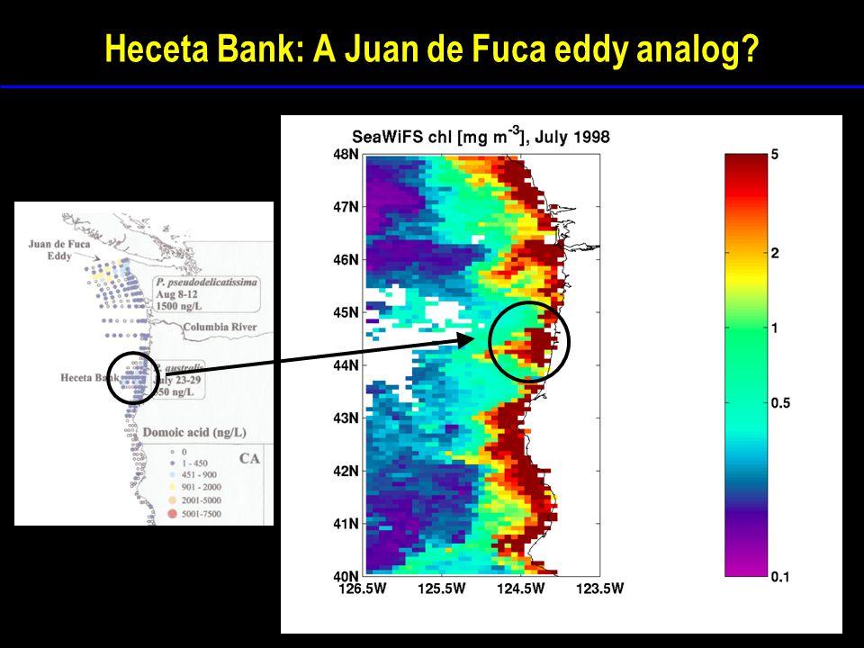 Heceta Bank: A Juan de Fuca eddy analog