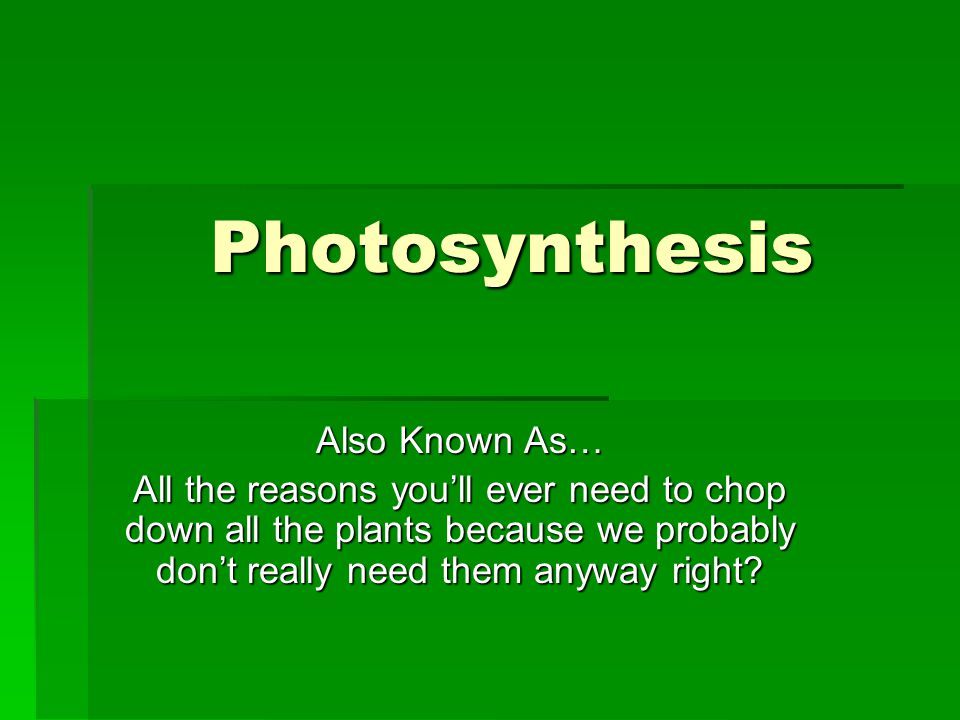Photosynthesis Also Known As… All the reasons you'll ever need to chop down all the plants because we probably don't really need them anyway right?