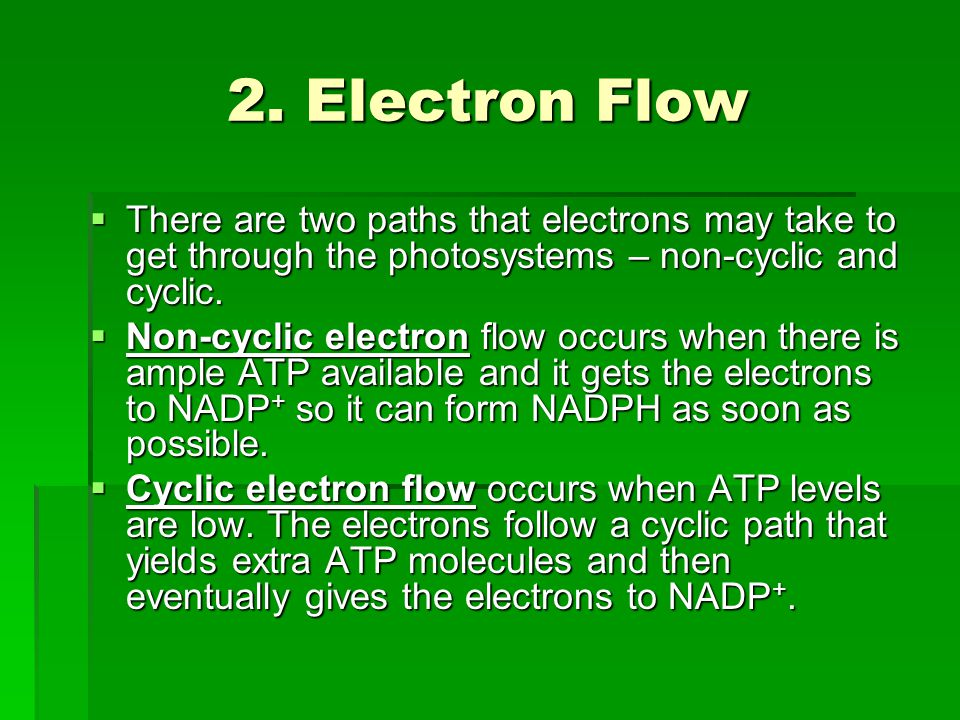 Non-cyclic Electron Flow 1.Photons hit P680 – electrons are excited and go to primary electron acceptor.