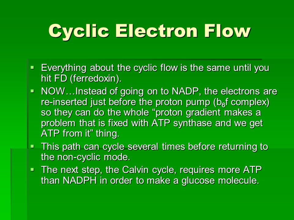 Cyclic Electron Flow  Everything about the cyclic flow is the same until you hit FD (ferredoxin).  NOW…Instead of going on to NADP, the electrons ar