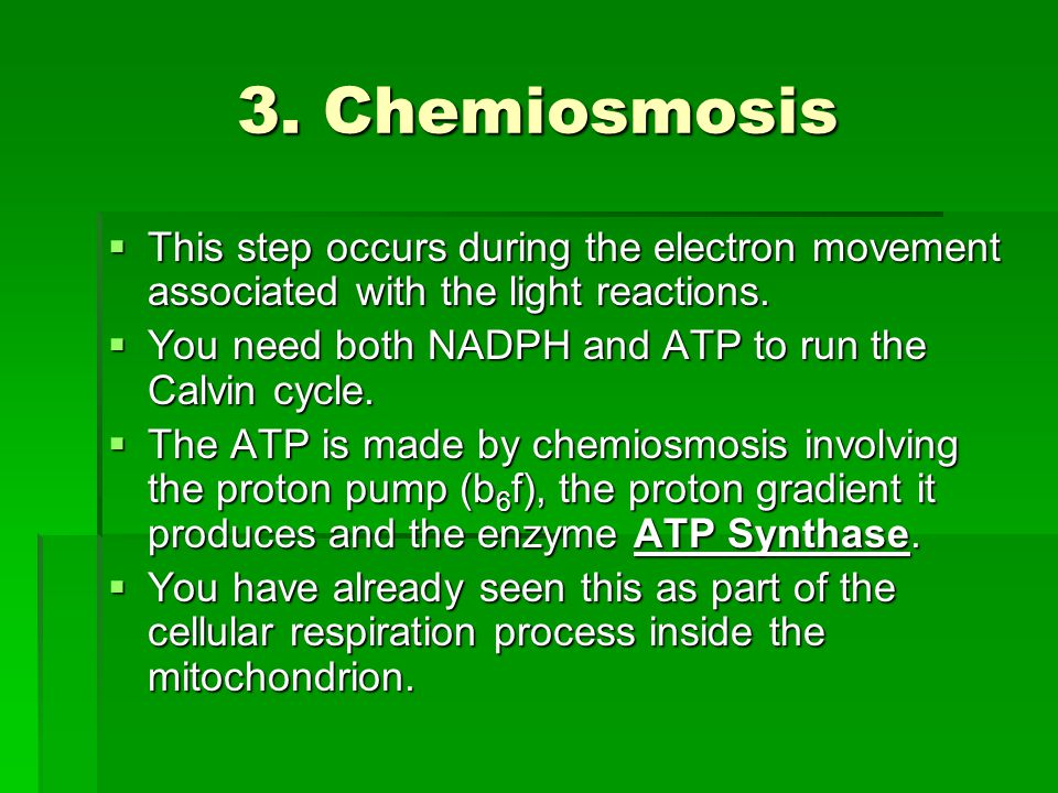 3. Chemiosmosis  This step occurs during the electron movement associated with the light reactions.  You need both NADPH and ATP to run the Calvin c