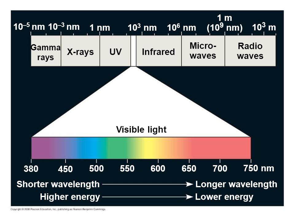 UV Visible light Infrared Micro- waves Radio waves X-rays Gamma rays 10 3 m 1 m (10 9 nm) 10 6 nm 10 3 nm 1 nm 10 –3 nm 10 –5 nm 380 450 500 550 600 650 700 750 nm Longer wavelength Lower energyHigher energy Shorter wavelength