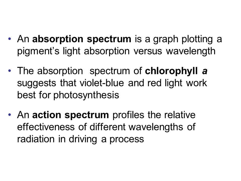An absorption spectrum is a graph plotting a pigment's light absorption versus wavelength The absorption spectrum of chlorophyll a suggests that violet-blue and red light work best for photosynthesis An action spectrum profiles the relative effectiveness of different wavelengths of radiation in driving a process