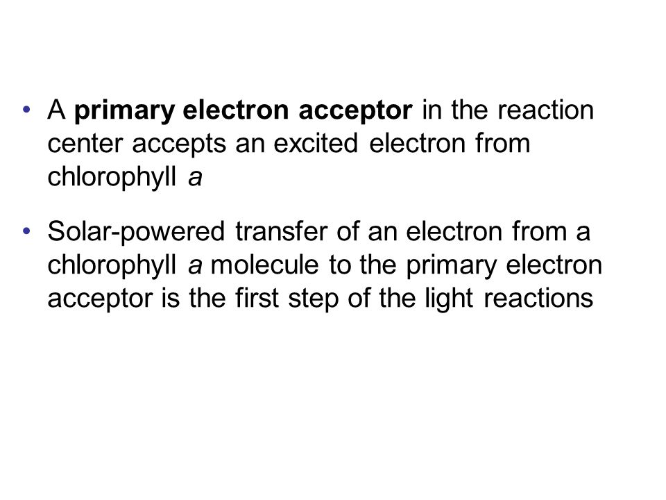 A primary electron acceptor in the reaction center accepts an excited electron from chlorophyll a Solar-powered transfer of an electron from a chlorophyll a molecule to the primary electron acceptor is the first step of the light reactions
