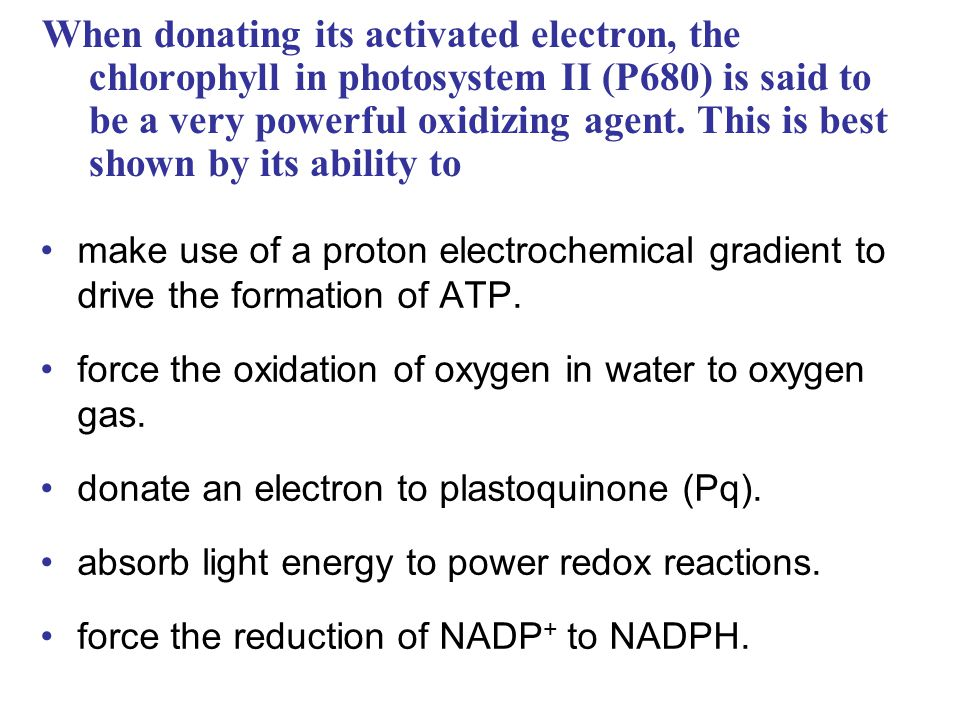 When donating its activated electron, the chlorophyll in photosystem II (P680) is said to be a very powerful oxidizing agent.