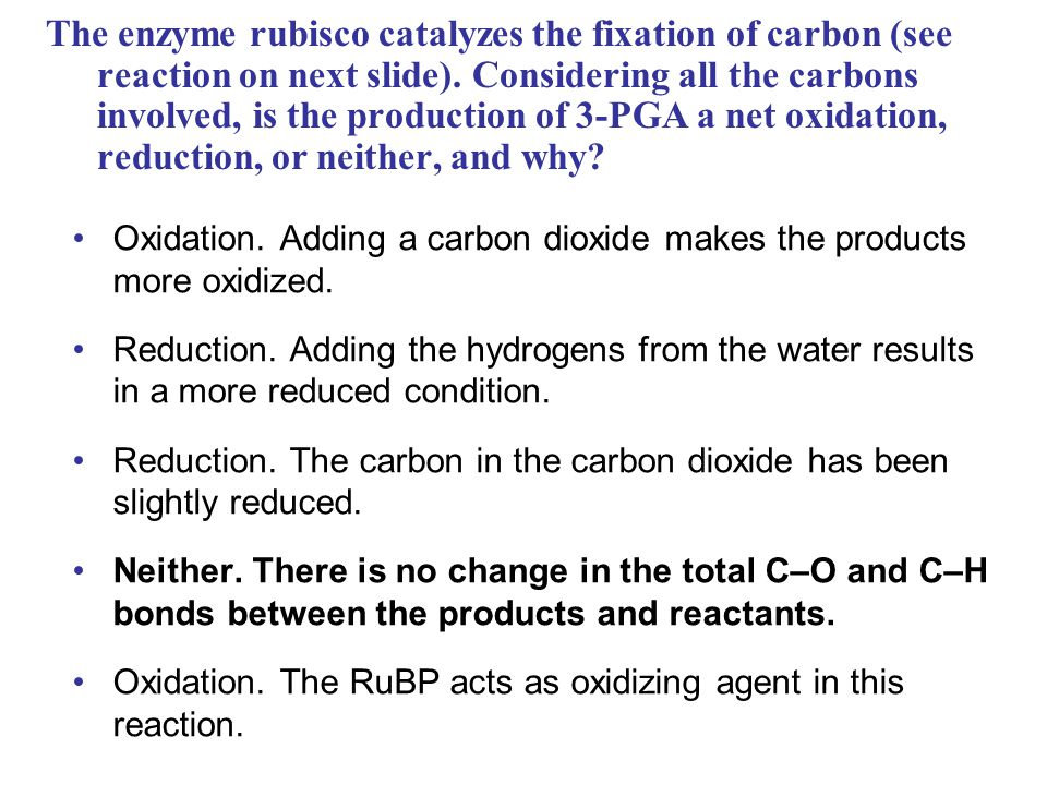 The enzyme rubisco catalyzes the fixation of carbon (see reaction on next slide).