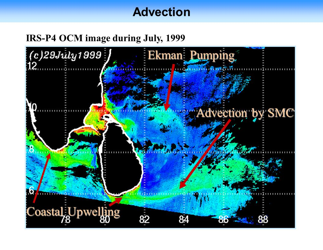 Ekman Pumping Advection by SMC Coastal Upwelling IRS-P4 OCM image during July, 1999 Advection
