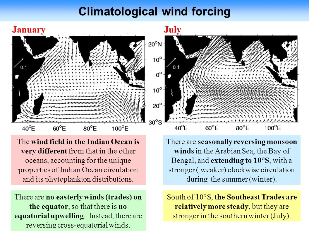Climatological wind forcing JanuaryJuly The wind field in the Indian Ocean is very different from that in the other oceans, accounting for the unique properties of Indian Ocean circulation and its phytoplankton distributions.