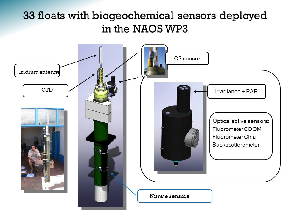 33 floats with biogeochemical sensors deployed in the NAOS WP3 Nitrate sensors O2 sensor Iridium antenna Irradiance + PAR Optical active sensors: Fluorometer CDOM Fluorometer Chla Backscatterometer CTD