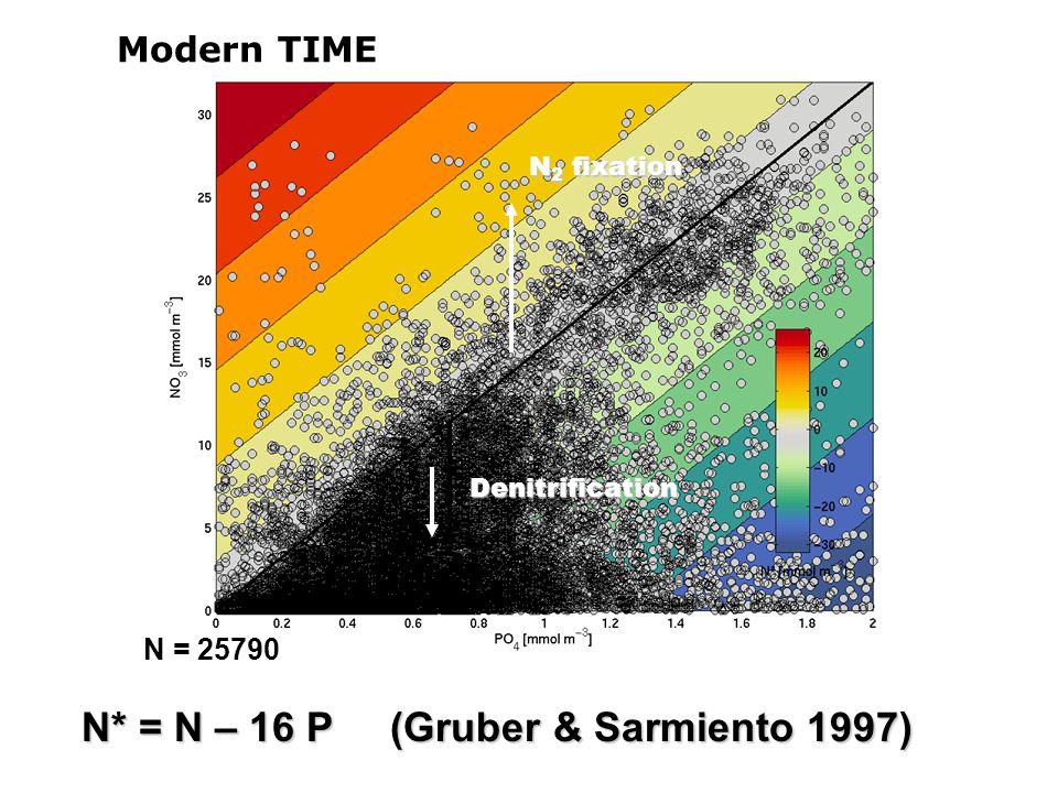 N* = N – 16 P (Gruber & Sarmiento 1997) N = 25790 N 2 fixation Denitrification Modern TIME