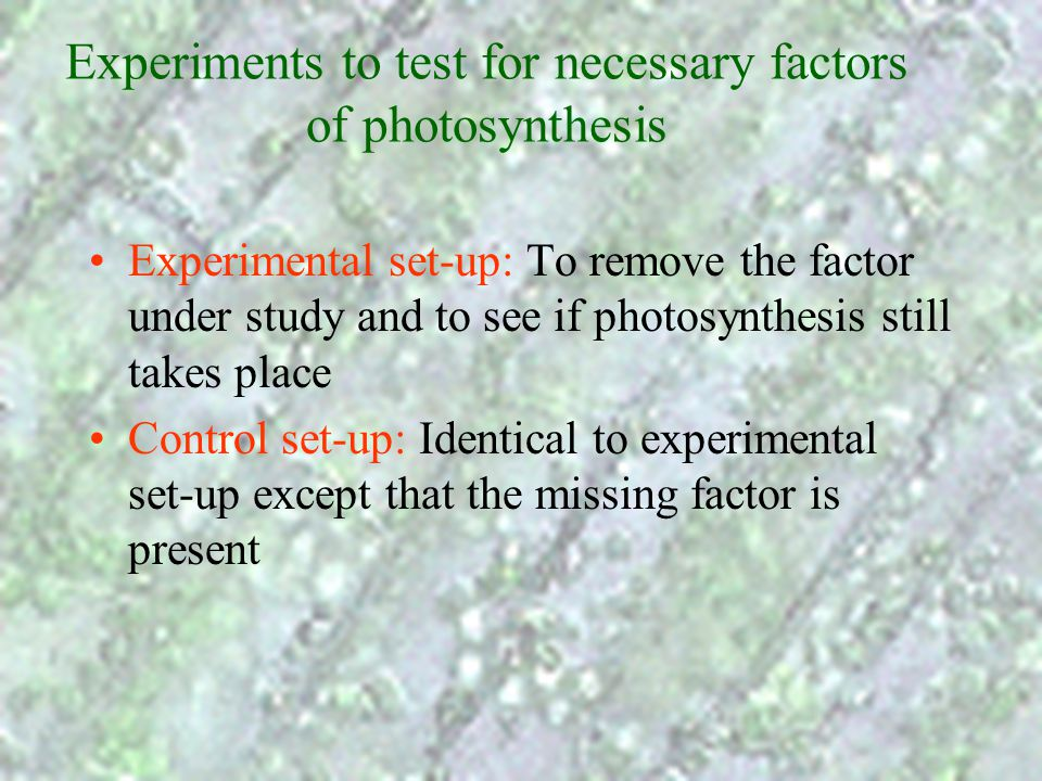 Importance of photosynthesis It is the only method to convert energy in sunlight into chemical energy –Animals have to depend on plants for food suppl
