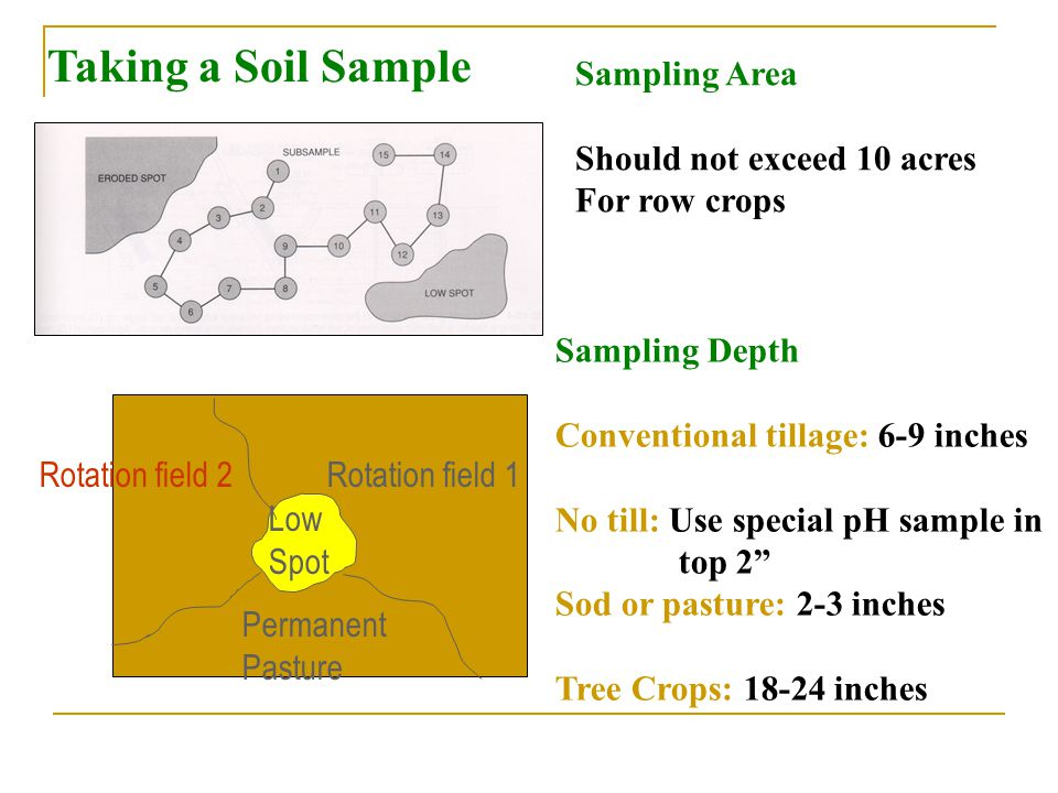 Taking a Soil Sample Rotation field 1 Permanent Pasture Low Spot Rotation field 2 Sampling Depth Conventional tillage: 6-9 inches No till: Use special pH sample in top 2 Sod or pasture: 2-3 inches Tree Crops: 18-24 inches Sampling Area Should not exceed 10 acres For row crops