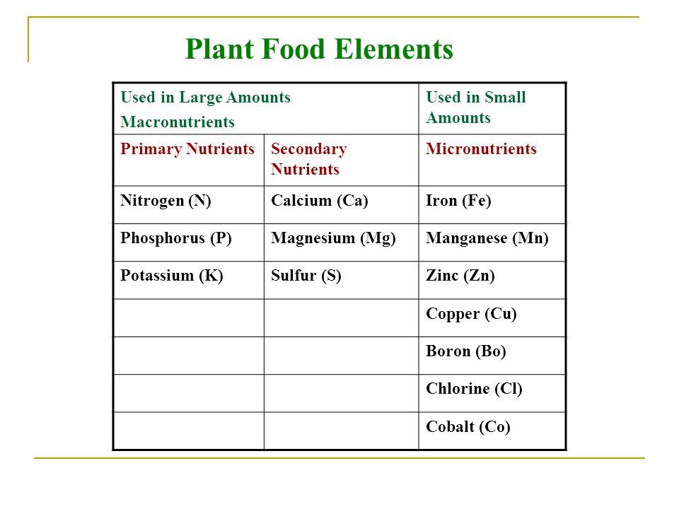 Plant Food Elements Used in Large Amounts Macronutrients Used in Small Amounts Primary NutrientsSecondary Nutrients Micronutrients Nitrogen (N)Calcium (Ca)Iron (Fe) Phosphorus (P)Magnesium (Mg)Manganese (Mn) Potassium (K)Sulfur (S)Zinc (Zn) Copper (Cu) Boron (Bo) Chlorine (Cl) Cobalt (Co)
