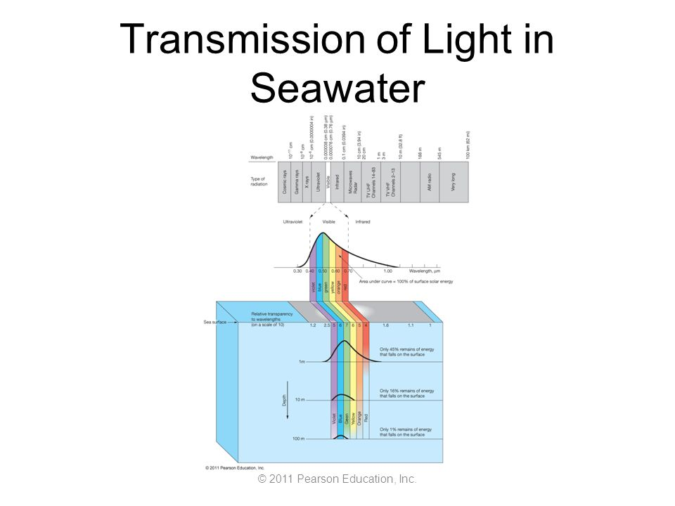 © 2011 Pearson Education, Inc. Transmission of Light in Seawater