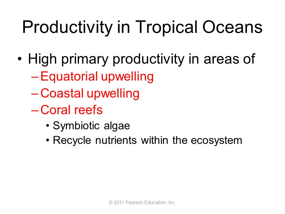 © 2011 Pearson Education, Inc. Productivity in Tropical Oceans High primary productivity in areas of –Equatorial upwelling –Coastal upwelling –Coral r