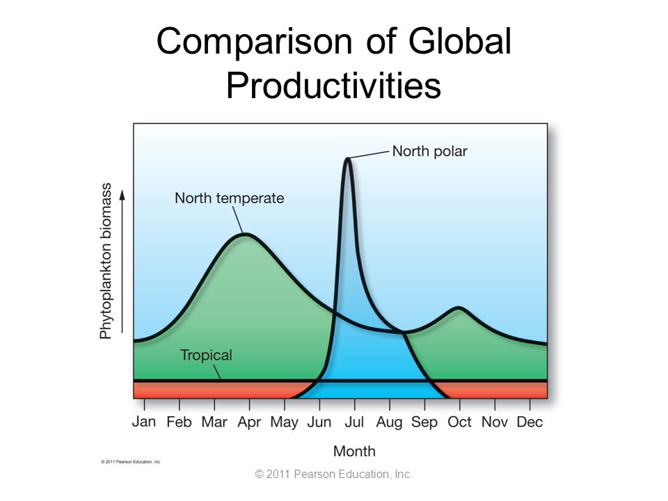 © 2011 Pearson Education, Inc. Comparison of Global Productivities