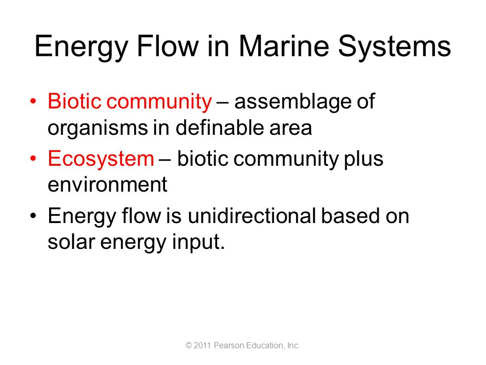 © 2011 Pearson Education, Inc. Energy Flow in Marine Systems Biotic community – assemblage of organisms in definable area Ecosystem – biotic community