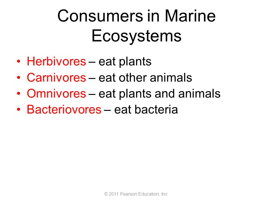 © 2011 Pearson Education, Inc. Consumers in Marine Ecosystems Herbivores – eat plants Carnivores – eat other animals Omnivores – eat plants and animal