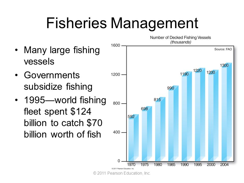 © 2011 Pearson Education, Inc. Fisheries Management Many large fishing vessels Governments subsidize fishing 1995—world fishing fleet spent $124 billi