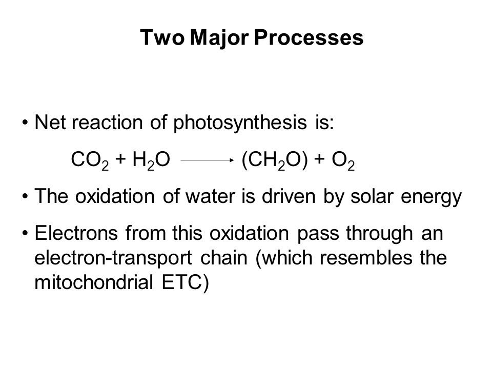 Two Major Processes Net reaction of photosynthesis is: CO 2 + H 2 O (CH 2 O) + O 2 The oxidation of water is driven by solar energy Electrons from this oxidation pass through an electron-transport chain (which resembles the mitochondrial ETC)