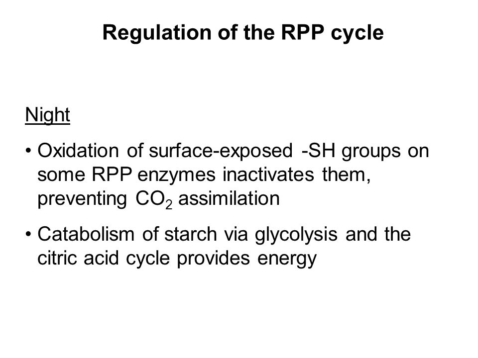 Regulation of the RPP cycle Night Oxidation of surface-exposed -SH groups on some RPP enzymes inactivates them, preventing CO 2 assimilation Catabolism of starch via glycolysis and the citric acid cycle provides energy
