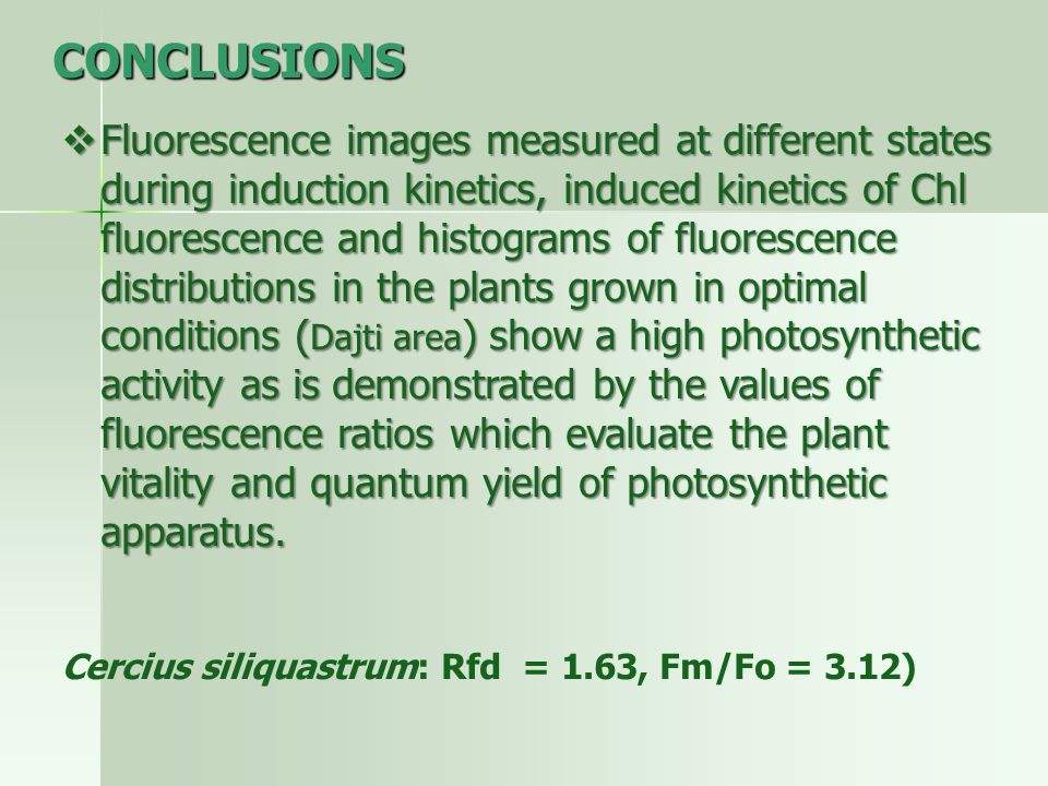 CONCLUSIONS  Fluorescence images measured at different states during induction kinetics, induced kinetics of Chl fluorescence and histograms of fluorescence distributions in the plants grown in optimal conditions ( Dajti area ) show a high photosynthetic activity as is demonstrated by the values of fluorescence ratios which evaluate the plant vitality and quantum yield of photosynthetic apparatus.