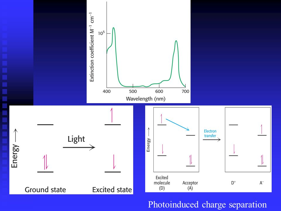 Photoinduced charge separation