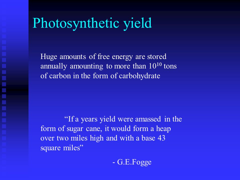 Photosynthetic yield Huge amounts of free energy are stored annually amounting to more than 10 10 tons of carbon in the form of carbohydrate If a years yield were amassed in the form of sugar cane, it would form a heap over two miles high and with a base 43 square miles - G.E.Fogge