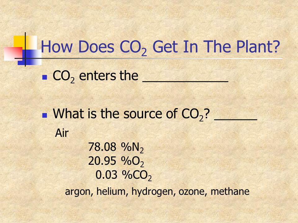 How Does CO 2 Get In The Plant? CO 2 enters the ____________ What is the source of CO 2 ? ______ Air 78.08 %N 2 20.95 %O 2 0.03 %CO 2 argon, helium, h