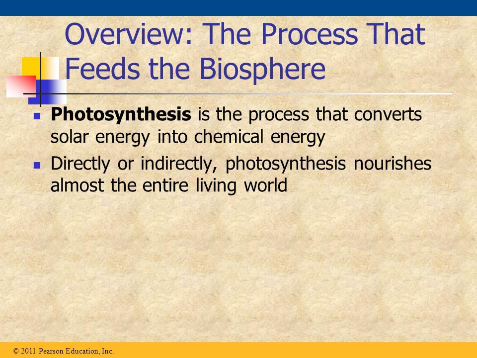 Overview: The Process That Feeds the Biosphere Photosynthesis is the process that converts solar energy into chemical energy Directly or indirectly, p