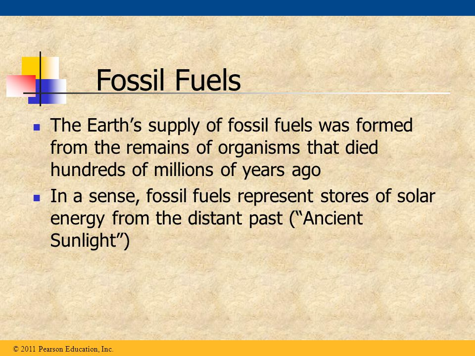 The Earth's supply of fossil fuels was formed from the remains of organisms that died hundreds of millions of years ago In a sense, fossil fuels repre