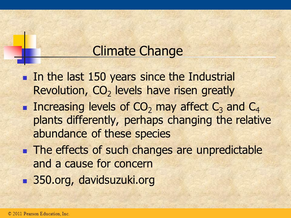 In the last 150 years since the Industrial Revolution, CO 2 levels have risen greatly Increasing levels of CO 2 may affect C 3 and C 4 plants differen