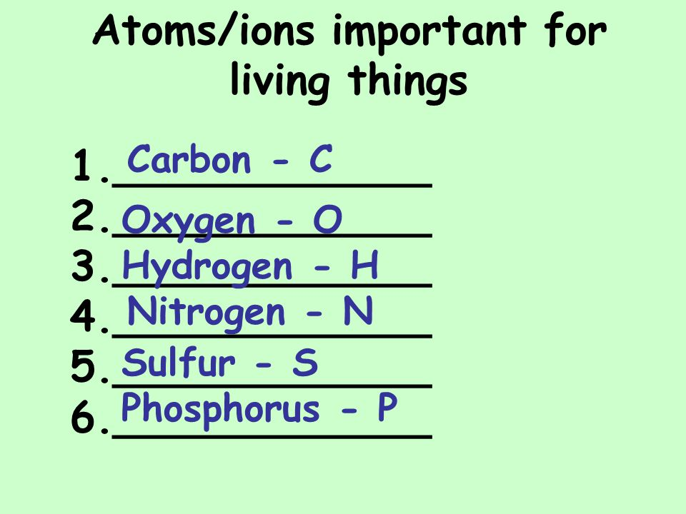 1.____________ 2.____________ 3.____________ 4.____________ 5.____________ 6.____________ Atoms/ions important for living things Carbon - C Oxygen - O Hydrogen - H Nitrogen - N Sulfur - S Phosphorus - P