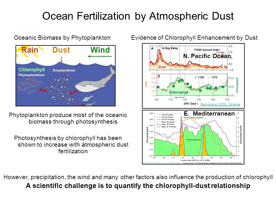 Ocean Fertilization by Atmospheric Dust Phytoplankton produce most of the oceanic biomass through photosynthesis Photosynthesis by chlorophyll has been shown to increase with atmospheric dust fertilization Bishop et al.(2002), Science Evidence of Chlorophyll Enhancement by Dust DustWindRain Chlorophyll However, precipitation, the wind and many other factors also influence the production of chlorophyll A scientific challenge is to quantify the chlorophyll-dust relationship E.