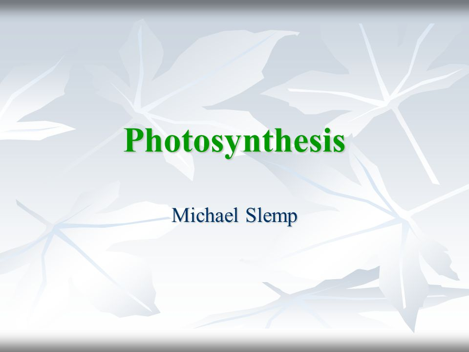 Photosynthesis Michael Slemp