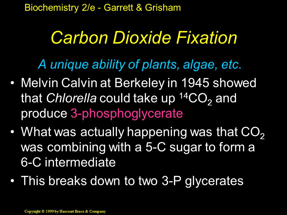 Biochemistry 2/e - Garrett & Grisham Copyright © 1999 by Harcourt Brace & Company Carbon Dioxide Fixation A unique ability of plants, algae, etc.