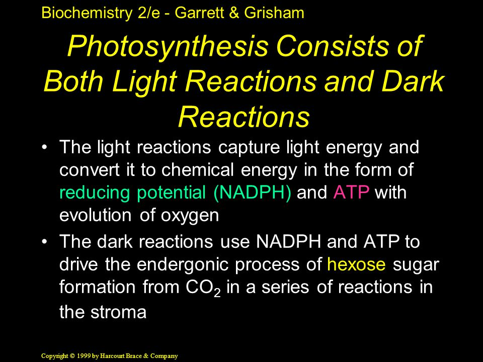 Biochemistry 2/e - Garrett & Grisham Copyright © 1999 by Harcourt Brace & Company Photosynthesis Consists of Both Light Reactions and Dark Reactions The light reactions capture light energy and convert it to chemical energy in the form of reducing potential (NADPH) and ATP with evolution of oxygen The dark reactions use NADPH and ATP to drive the endergonic process of hexose sugar formation from CO 2 in a series of reactions in the stroma
